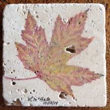 Maple leaf - watercolor pencil on travertine tile.